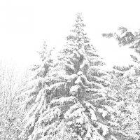 Зима :: Alexander Dementev