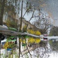 Весна :: Елена Николаева