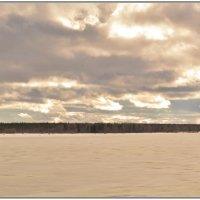 Река Онега в ожидании ледохода. :: Марина Никулина