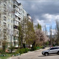 Весенний день :: Нина Корешкова
