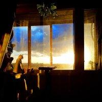Закат созерцающий :: Андрей Зайцев