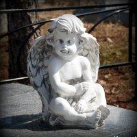 Берегите ангела-хранителя! :: Андрей Заломленков