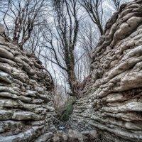 Каменный каньон . :: Александр Криулин