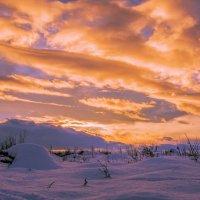 Зимний закат. :: юрий Амосов