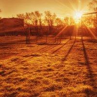 Дотянуться до солнца :: Олег Окселенко