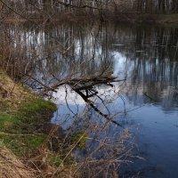 Весенний пейзаж :: kolyeretka