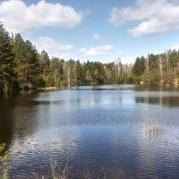 Весеннее озеро :: Игорь Ковалевский