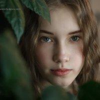 Эвелинка :: Оксана Сердюкова