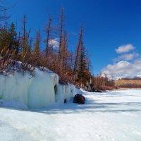 Ледовый берег реки :: Анатолий Иргл