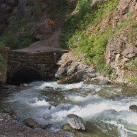 Река Чибитка :: val-isaew2010 Валерий Исаев