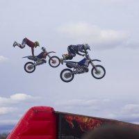 Летающие Harley-Davidson :: Светлана З