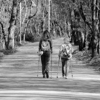 Женщины с палками для скандинавской ходьбы :: Олег Брусенцев