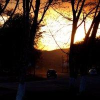 -в пламени заката... :: СветланаS ...