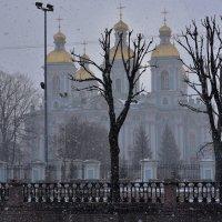 Апрельский снег. :: Наталья