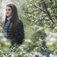 Майский снег :: Olga Rosenberg