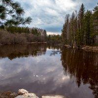 таёжная река после ледохода... :: Сергей