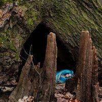 Forest spirits :: Юля Грек