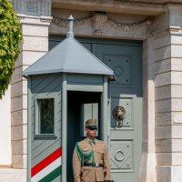 Будапешт. Президентский дворец :: Сергей Николаевич Бушмарин