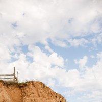 Многоэтажный птичий дом :: Евгения Савина