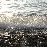 Волна :: Марта