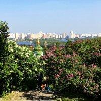Ботанический сад. Май. :: Сергей Рубан