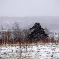 У природы нет плохой погоды :: Виктория Большагина