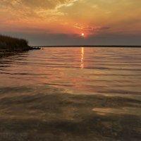 Сонное озеро :: Ольга Голубева