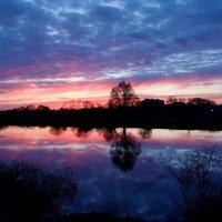 Зеркальное отражение заката. :: Антонина Гугаева