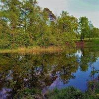 Отражения Серебряного озера... :: Sergey Gordoff