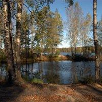 Медное озеро :: Наталья