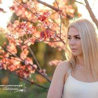 Весна... :: Александр Пивоваренок