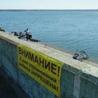 Рыбалка запрещена :: Юрий Новичков
