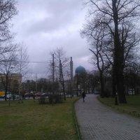 Городской пейзаж с Мечетью. (Санкт-Петербург). :: Светлана Калмыкова