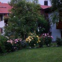 Вечером в саду ... :: Алёна Савина