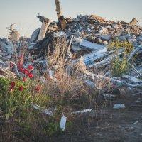 цветы лучше пуль :: Алина Гриб