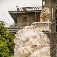 Львиная стража... Воронцовский дворец. :: Ruslan