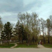 Сибирская весна . :: Мила Бовкун