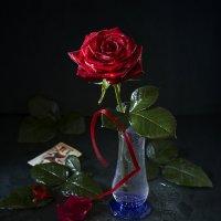 Тобой подаренная роза... :: Татьяна Карачкова
