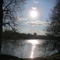 Солнечная дорожка :: Дмитрий Никитин