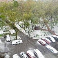 8 МАЯ ... а снег идёт ... :: Александр Шурпаков
