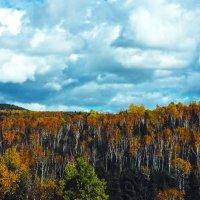 Природа провинции Квебек, Канада :: Виталий Бараковский