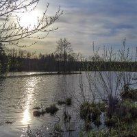 На Барском озере :: Сергей Цветков