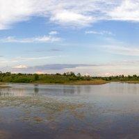 Панорама пруда. :: Владимир