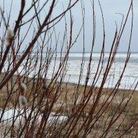 Ледоход на Белом море. Северодвинск, о.Ягры. :: Михаил Поскотинов