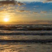 Балтийское море :: Vladislav Gushin