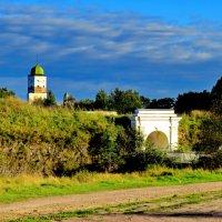 Анненские укрепления :: Светлана Петошина