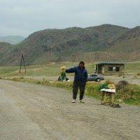 Окрестности Алматы. горный лук.... :: Murat Bukaev