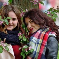 Весна,девушки... :: Юрий Анипов