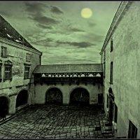 В Олеськом замке... :: Юрий Гординский