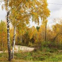 Пейзаж :: Людмилаfdnjgjhpnhptn